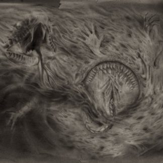 """NIDSANG (Sweden) - """"Into the Womb of Dissolving Flames"""" - LP 2014 - Pulverised Records"""