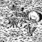 "DEATHSPELL OMEGA (France) - ""Inquisitors of Satan"" - CD Slipcase Black Jewel Case - End All Life"